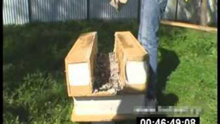 Испытания SIP панелей огнем и шашлыком 2