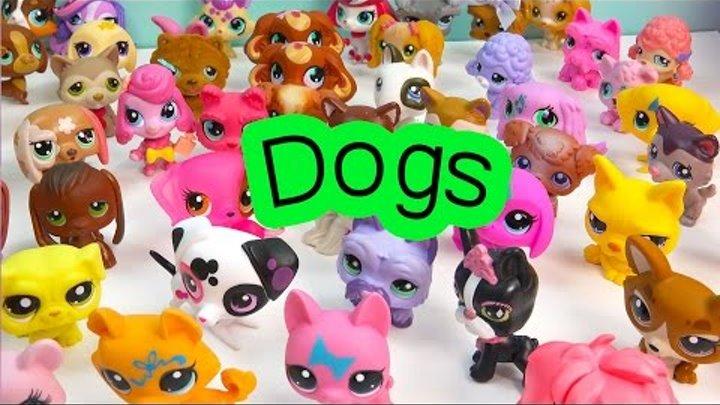 LPS DOGS Collection Tour Haul Video Bobblehead Littlest Pet Shop Animals Cookieswirlc Part 5 Toys