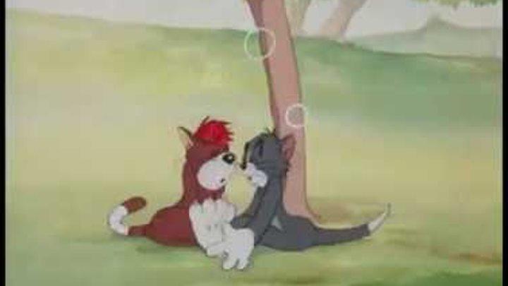 Том и Джерри 9 серия 2 часть (1943) К чему приводит жадность