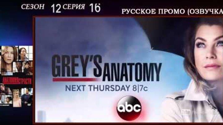 Анатомия страсти 12 сезон 16 серия Когда очень больно - русское промо, дата выхода озвучка