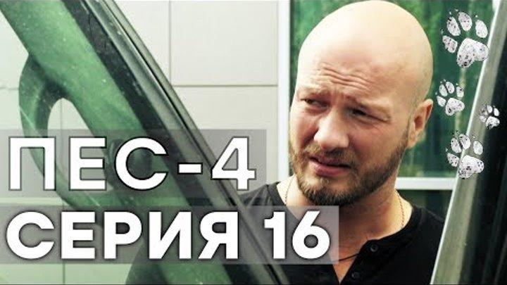 Сериал ПЕС - 4 сезон - 16 серия - ВСЕ СЕРИИ смотреть онлайн   СЕРИАЛЫ ICTV