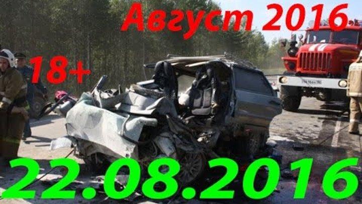 Новая Подборка Аварий и ДТП 18+ Август 2016 || Кучеряво Едем