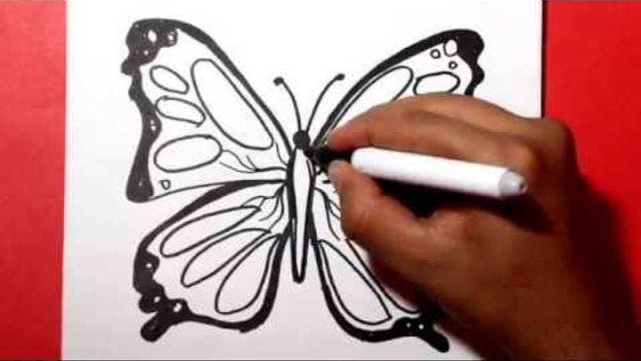 How To Draw A Butterfly Comodibujar Una Mariposa Como Hacer Una Mariposa Dibujos Para Colorear