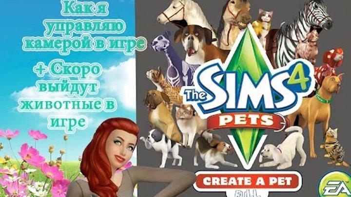 Скоро будут животные в игре The Sims 4+ ответы на вопросы моих подписчиков