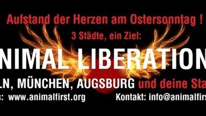 Aufstand der Herzen am Ostersonntag: Die Kirche hat die Tiere vergessen!