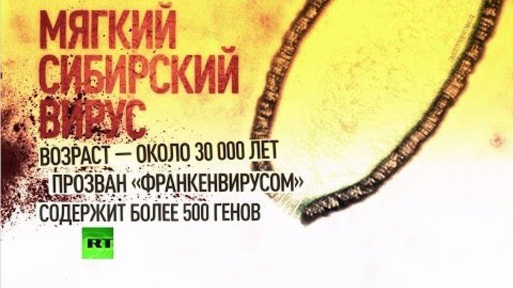 Ученые оживили вирус, обнаруженный в вечной мерзлоте в Сибири