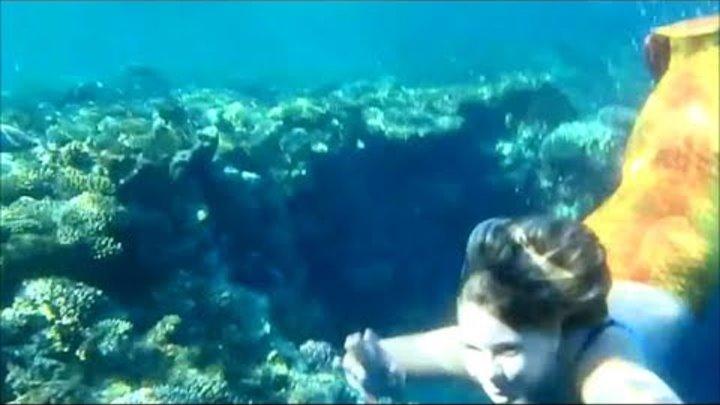 The 2 Tails Mermaids~Сезон 3 Серия 10 ~ Помощь