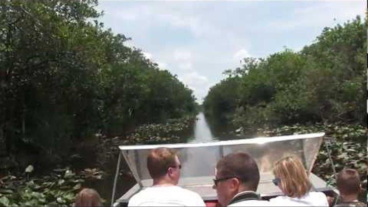 Красивая прогулка в Эверглайдс Парке, Флорида часть 2