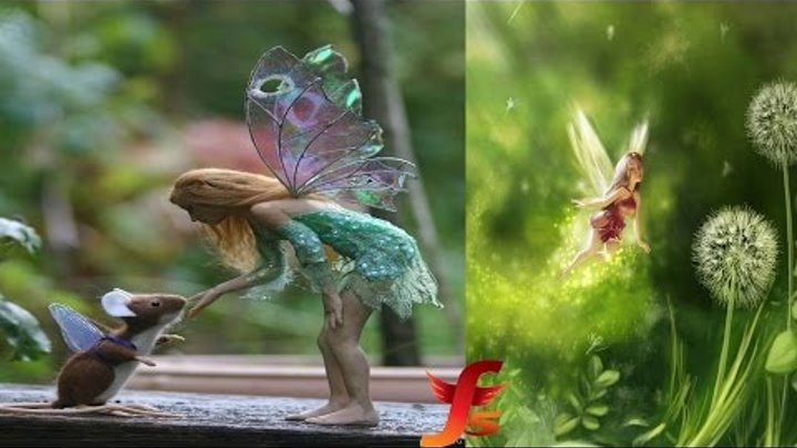 Top 5 Real Fairies Caught On Camera & Spotted In Real Life Evidence