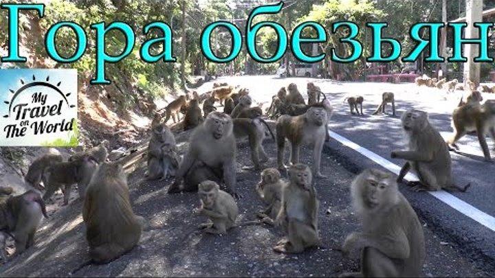 Гора обезьян, Пхукет, Таиланд, серия 421
