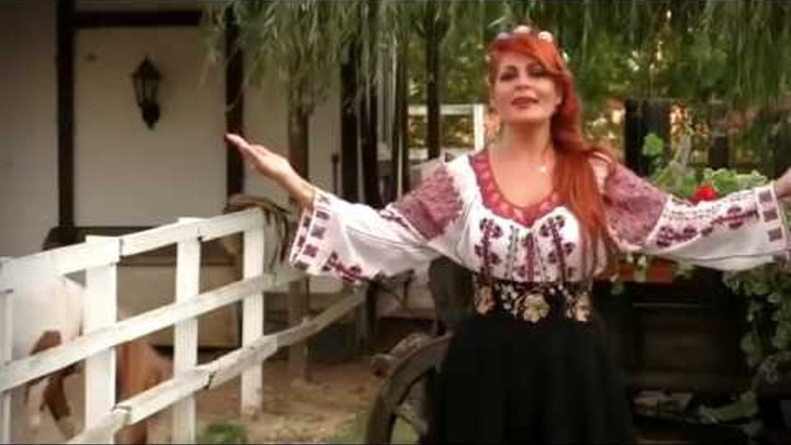 Muzica de petrecere live - Violeta Constantin
