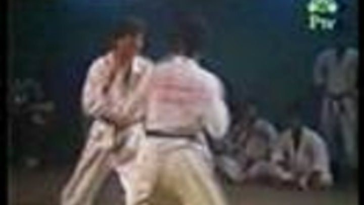 Kung Fu Fighter beat Karate fighter