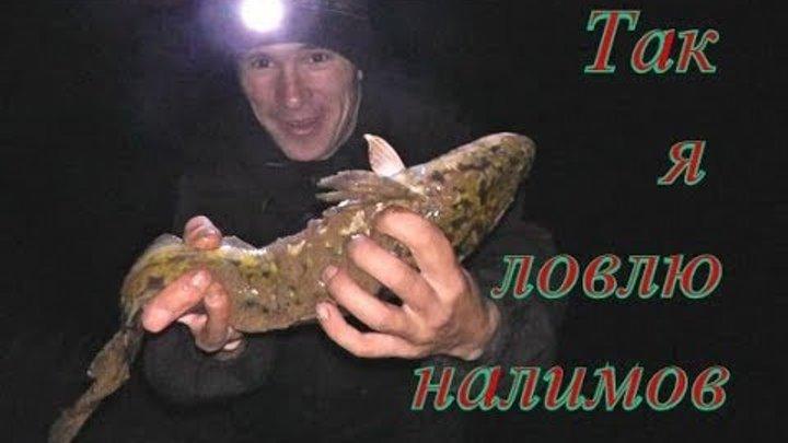 Так Я Ловлю Налима. Рыбалка на закидушки осенью - Болен Рыбалкой №567