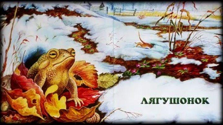 Лягушонок Михаил Пришвин аудио сказка: Baby Book Аудиосказки-Сказки на ночь.Слушать сказки онлайн