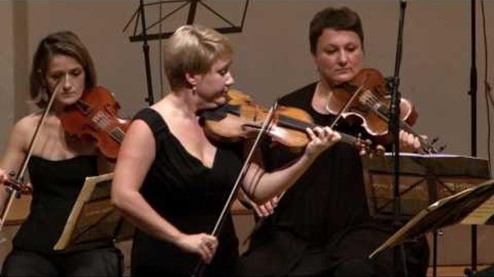Bach - violin concerto in E major BWV 1042 - 1st mov. Allegro - Unpluged @ 7:24 :)