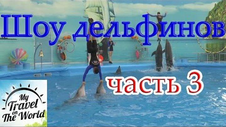 (NEMO DOLPHINS BAY PHUKET) Шоу дельфинов, часть 3, серия 459