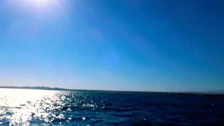 #Египет #хургада #beachalbatrosresort #подводноеплавонье #приложения #русалка #ариель #подводныймир