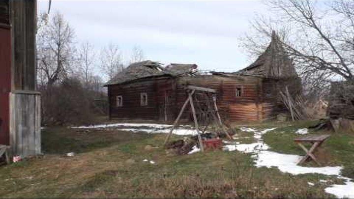 Тайны Костромских болот