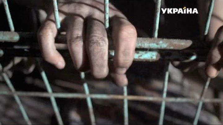 Твое место в клетке | Агенты справедливости | Сезон 3