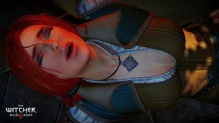 Sex With No Bodies - The Witcher 3 Wild Hunt Glitch