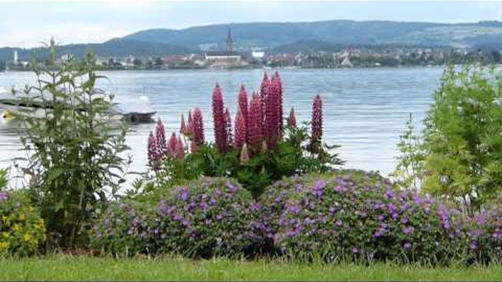 завораживающая красота озера