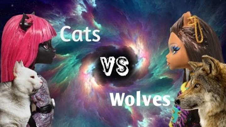 Stop motion Monster High. Cats VS Wolves./ Стоп моушен Монстер Хай. Кошки против волков.