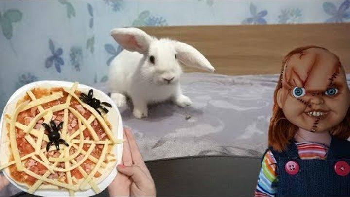 Кукла Чаки пугает кролика Лялю! Крипи-пицца на Хэллоуин от Непеты