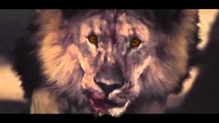 Цари и пророки (1 сезон) - Промо [HD]