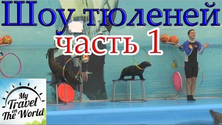 Шоу тюленей (NEMO DOLPHINS BAY PHUKET) часть 1, серия 457