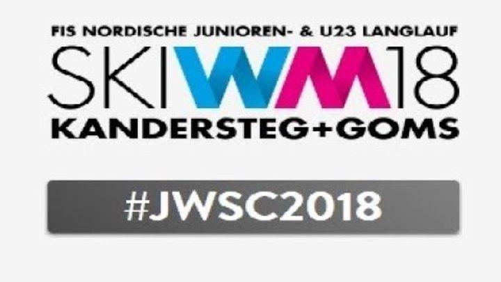 Лыжные гонки. Гомс. Чемпионат Мира. U-23. Женщины. 10 км. Классика.