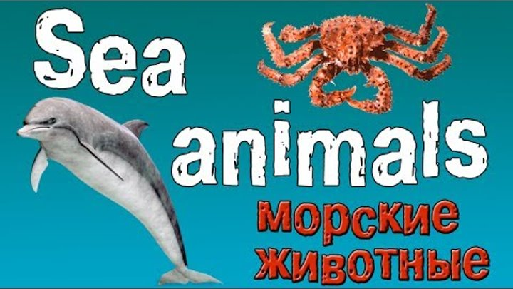 Английский для детей. Животные на английском языке.(морские животные).
