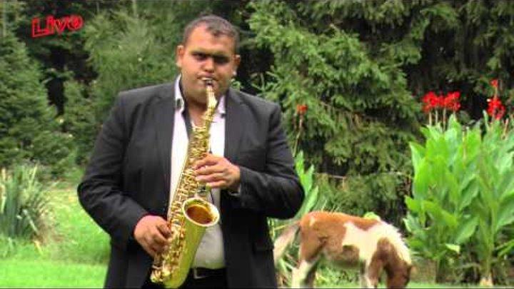 Marinel Purcelan Cel Mai Frumos Colaj Live Instrumentala Saxofon 2015