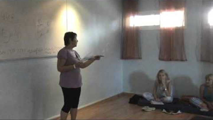 Инфотерапия - отзывы. Лекция на Музе 2010г