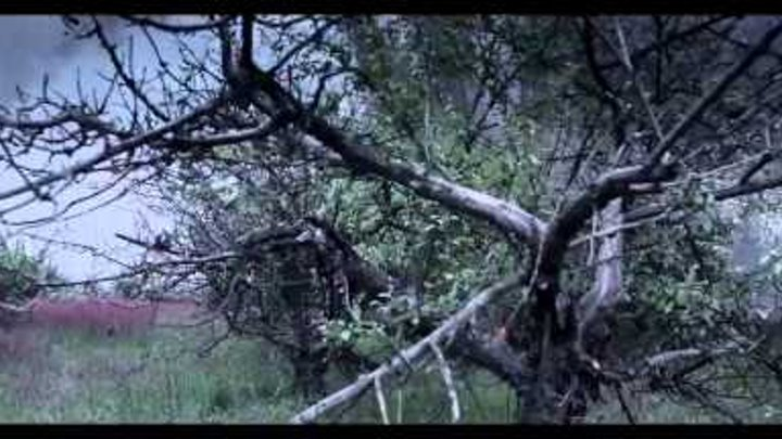 Дивитися онлайн Незламна (2015) трейлер українською, фільми в хорошій яксоті