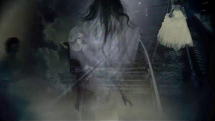 Паранойя /Paranoia/ Черный Ворон