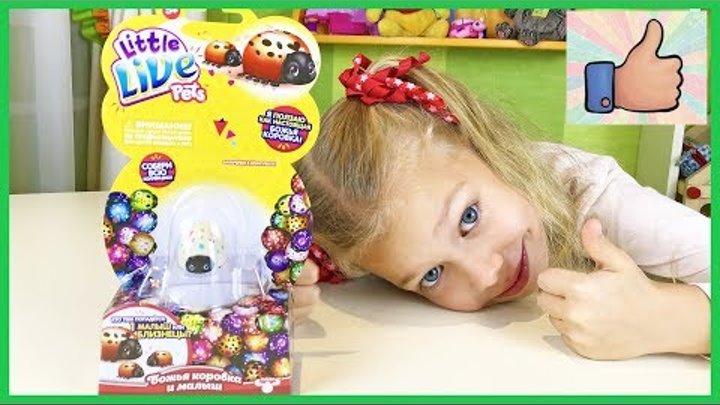Божья Коровка РАСПАКОВКА Little Live Pets Новая интерактивная игрушка для детей Открываем и играем!