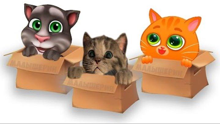 Мультик про котят Мой маленький котенок Говорящий Том котик Буббу Little Kitten My Talking Tom Bubbu