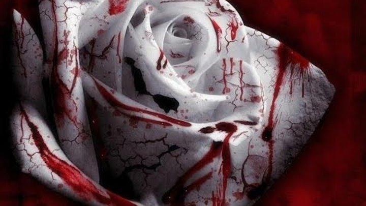 Кровавая леди Батори. Убийца занесенный в Книгу Рекордов Гиннесса.