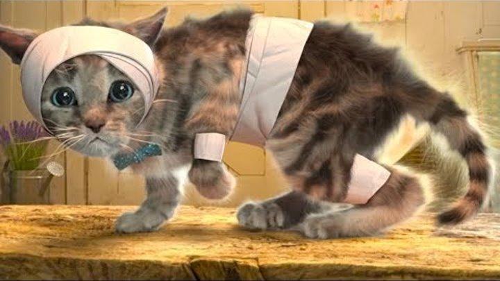 ПРИКЛЮЧЕНИЕ МАЛЕНЬКОГО КОТЕНКА мультик купаем лечим #котика ХЭЛЛОУИН для детей желейный медведь #КИД