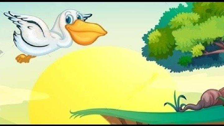 мультфильм животные, ПЕЛИКАН, мультик развивающий, мультики для 7 лет, мультик для самых маленьких