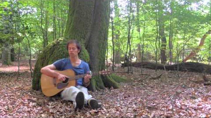 Samsara Davanala - Jasper Merle - Live under a tree