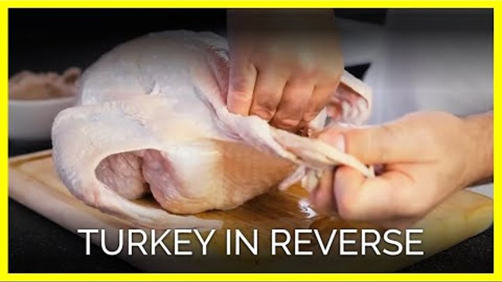 Turkey In Reverse