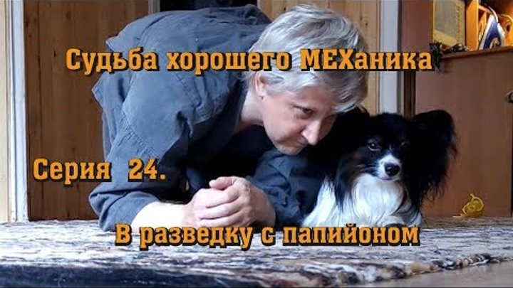 Судьба хорошего МЕХаника. Серия 24. В разведку с папийоном. (Папильон 1г. 6 мес.)