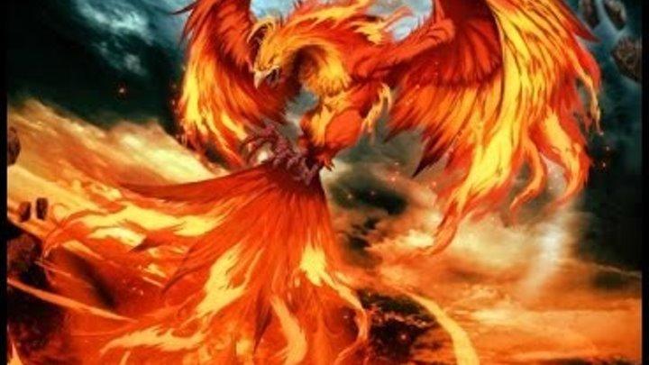 Phoenix Vino Tepes - Vlad Tepes nu este Dracula.