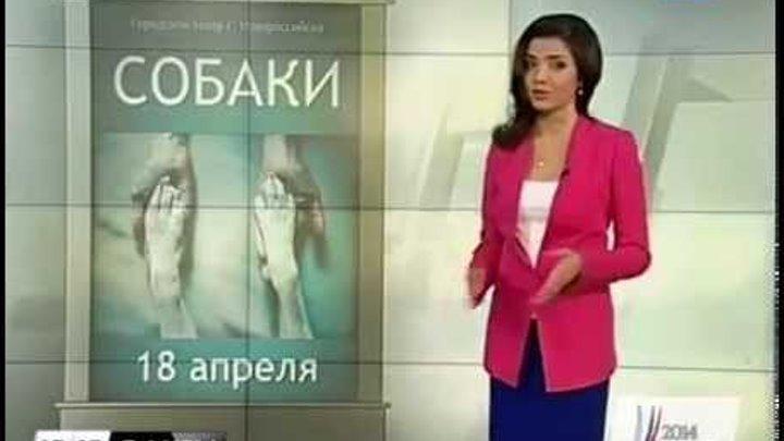 Афиша культурных событий в Краснодарском крае на 18-20 апреля
