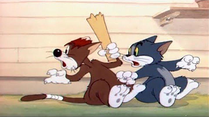 Том и Джерри - Несчастные коты - мультики для детей