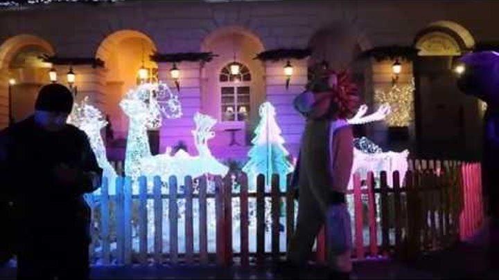 Новый год во Львове- 2016. Предновогодние ярмарки. Уличные музыканты.