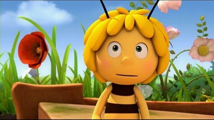 Пчелка Майя. 1 серия. Собираем пыльцу. Мультик для детей!