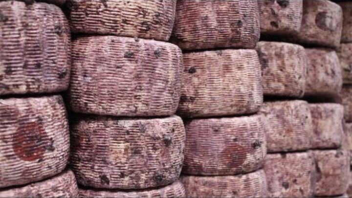 The Drunken Cheeses of Caseificio Carpenedo, Veneto, Italy