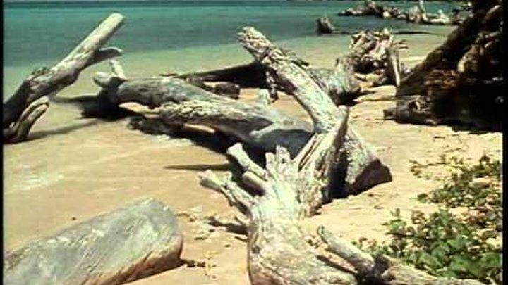 Жак Ив Кусто Серия 3.1 Андаманы Невидимые острова.avi